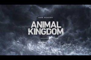 Animal Kingdom – Teaser promo della seconda stagione
