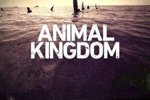 """Animal Kingdom – Stagione 2 – Promo """"Power"""""""