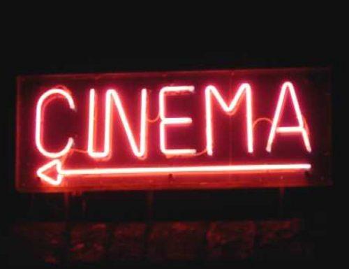 Rubrica di consigli. Dal cinema indipendente al fenomeno di culto.