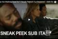 Fear the Walking Dead - 3x11 - La serpiente - Promo e sneak peek SUB ITA