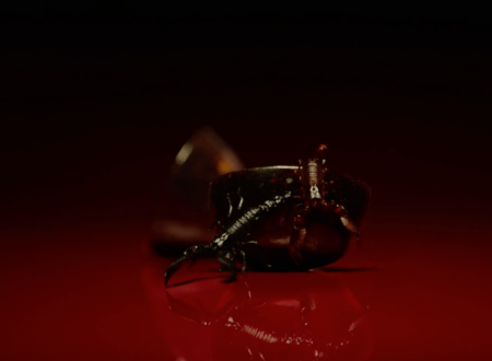 "American Horror Story 8: Apocalypse – Teaser ""Fig"""