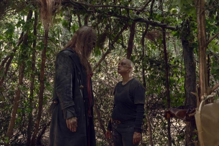 Alpha e Beta - The Walking Dead