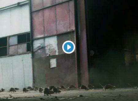 Stranger Things 3 – Un'invasione di topi nel primo teaser della serie Netflix